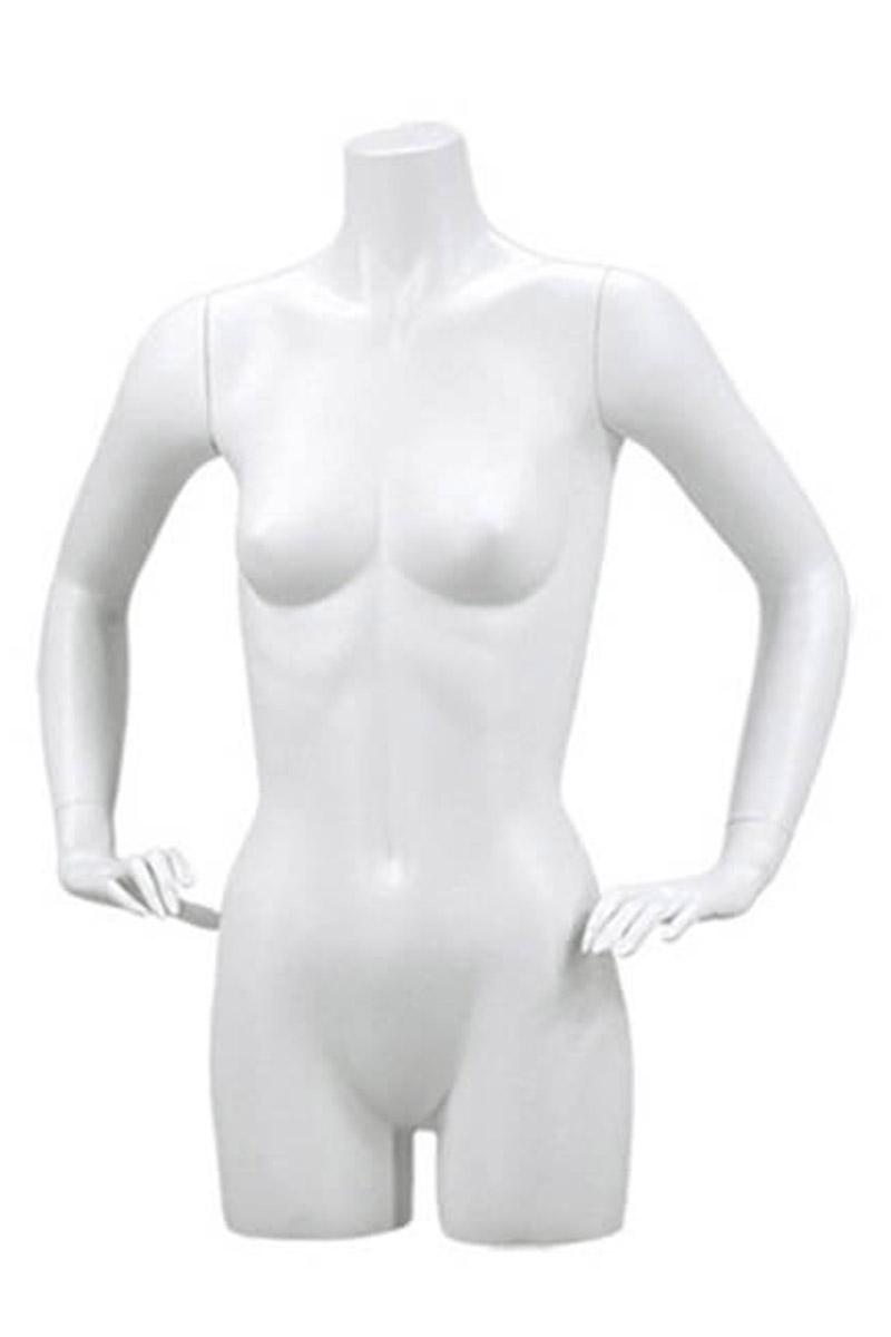 Nancy busto torso mujer